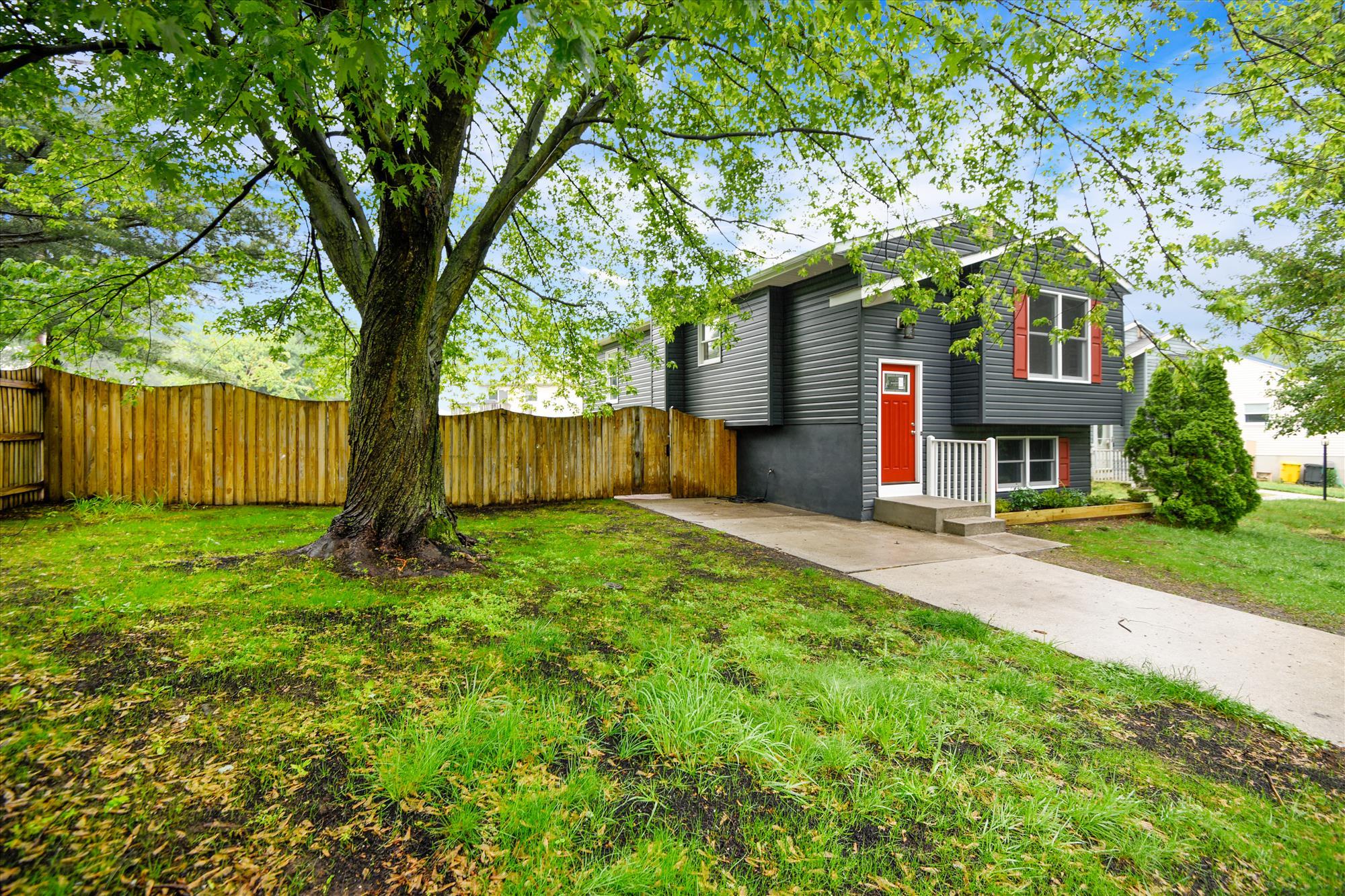 Exterior-Yard-_DSC3282