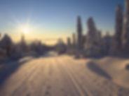 Lapland.jpg