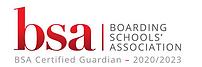 BSA_logo V2.png