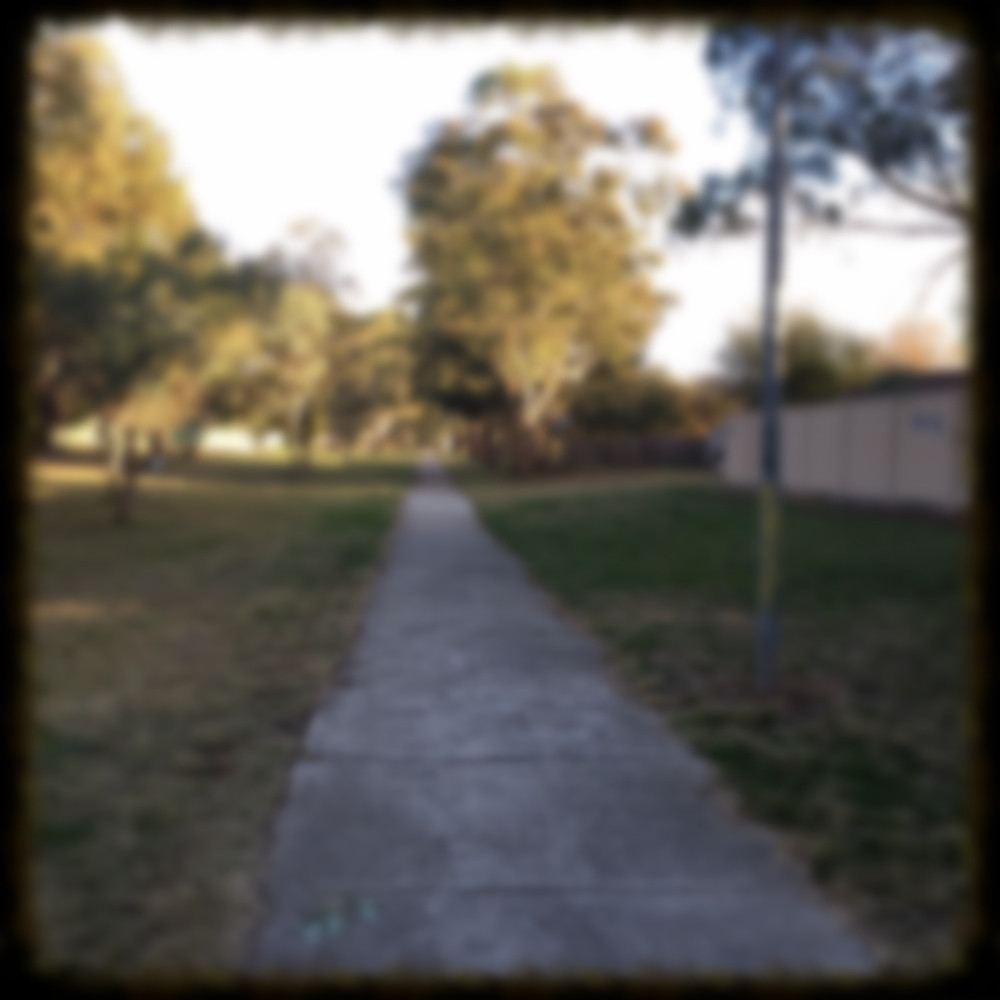 View of my walk, path and trees, blurry