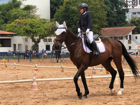 Centauro deu um show no Campeonato Estadual de Adestramento 2020 + Desafio Brasil !