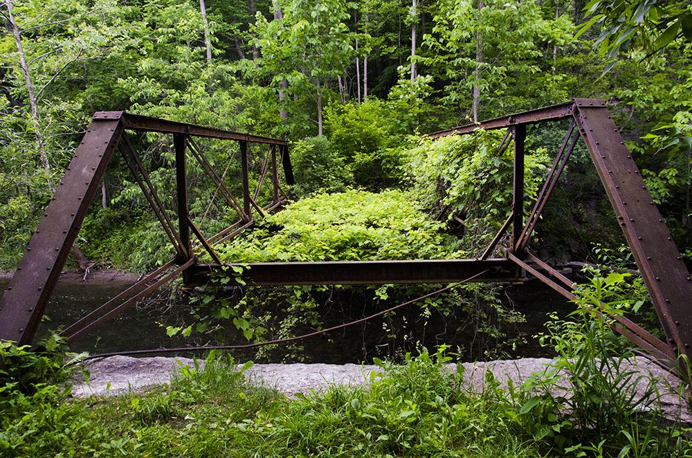 Bridge at Hopeton (1 of 1)
