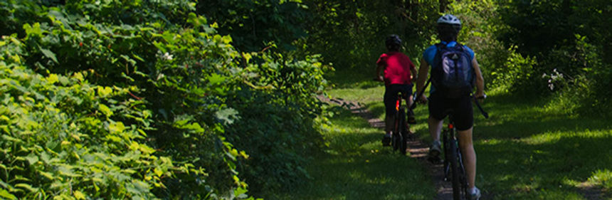 people riding bikes on the trail