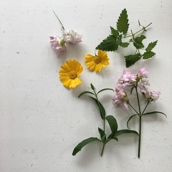 Ekologiskt balsam, göra eget balsam