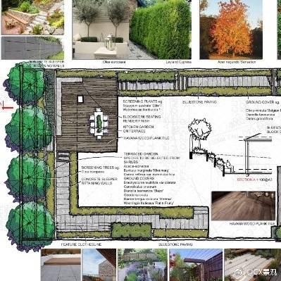规划报批景观设计