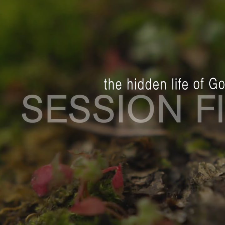 Get Your Life Back ~ The Hidden Life of God in You