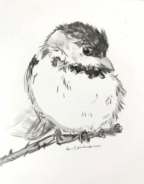 Sumi Chickadee