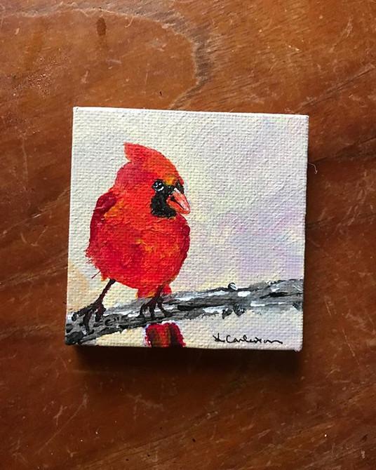 """3""""x3"""" miniature cardinal"""