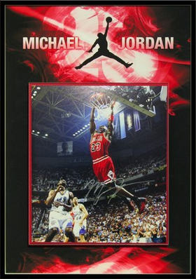 Michael Jordan Shadowbox