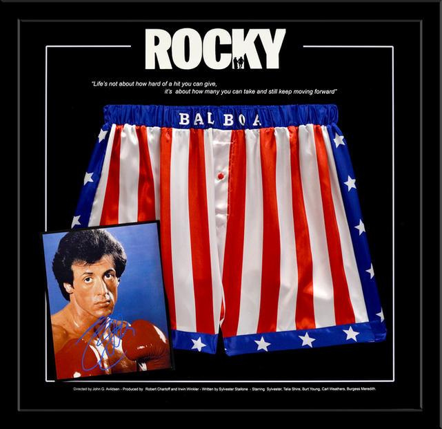Rocky Shorts Shadowbox