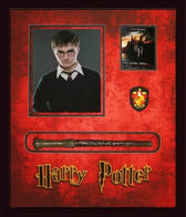 Harry Potter Magic Wand Shadowbox