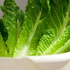 Lettuce- Romaine   1 head