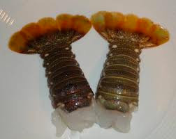 Lobster Tail - Local Catch- per lb