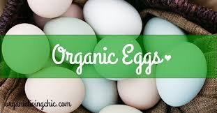 Organic Eggs - 18