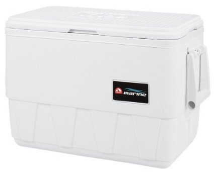 Ice Chest- Light Weight -48qt (Color & Brand vary)