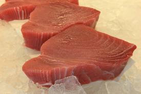 Tuna Steak Fillets- Fresh Local Catch - 1lb