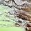 Thumbnail: See through the waves
