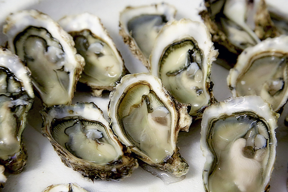 Oyster Service