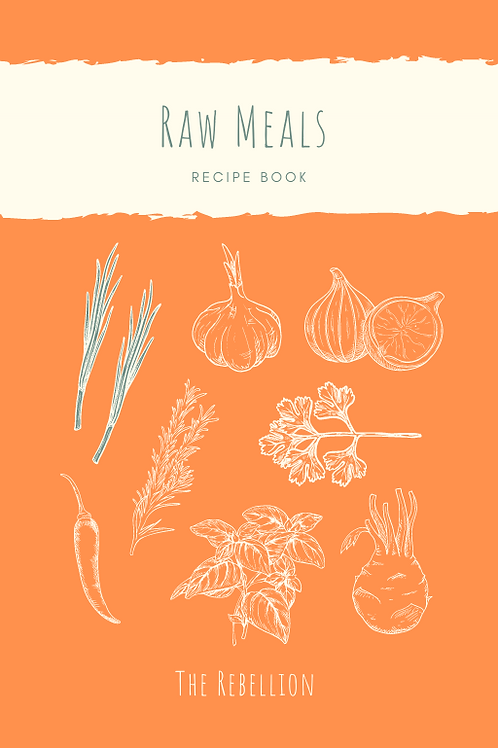 21 Day Raw Challenge Cookbook