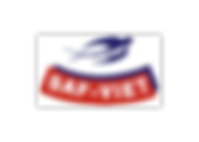 logo_safviet-1.png