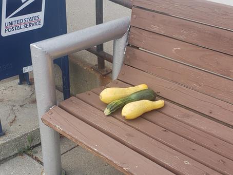 Zucchini Season Coming to an End