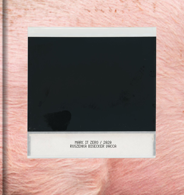Pigs on Polaroid cover3.jpg
