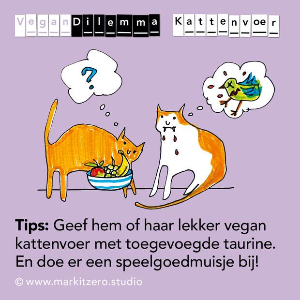 VeganDilemma Kattenvoer.jpg