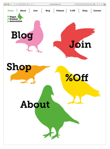VSA homepage.jpg