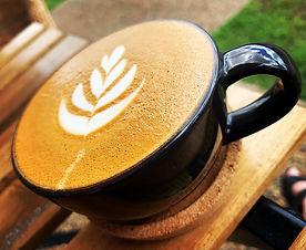 Fantastic Pet Friendly Cafe - Bundaberg