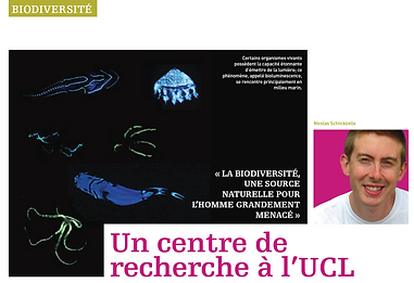 Biodiversity Research Centre @UCLouvain