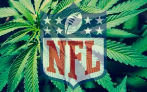 """NFL Offers to Look Into Use Of """"Marijuana as a Pain Management Tool"""""""