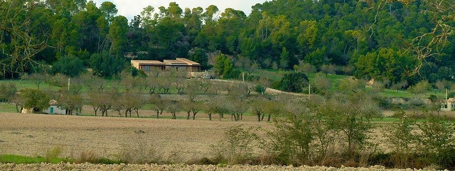 Ca'n Bovet villa | Mallorca | Spain