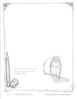 Draw Birds page 27.jpg