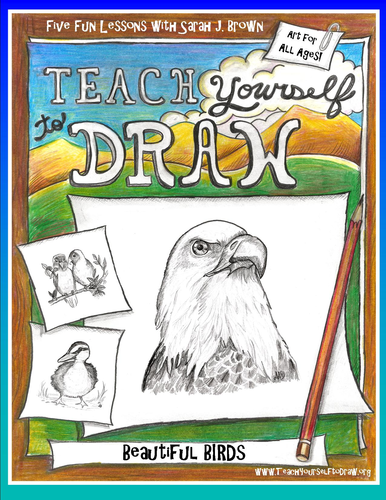 11 Draw Birds Cover.jpg