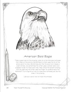 Draw Birds page 29.jpg