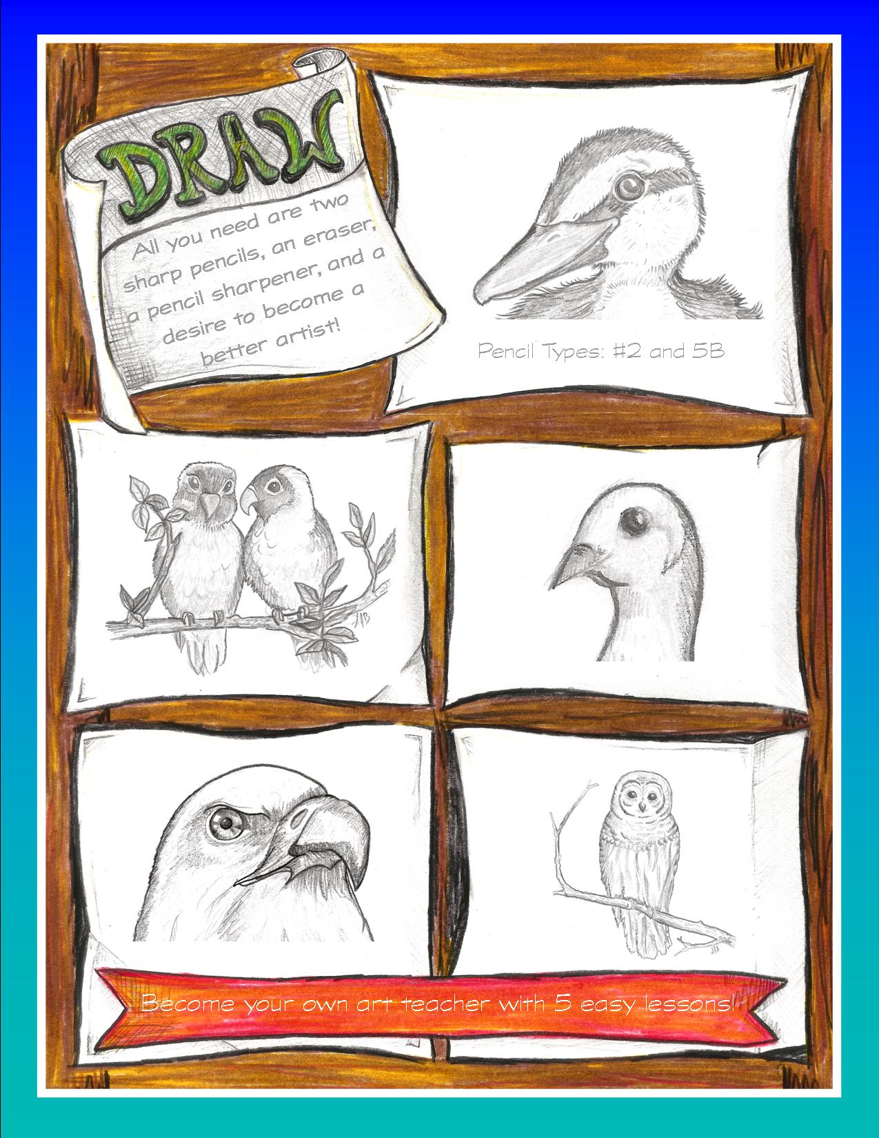 Draw Birds page back cover.jpg
