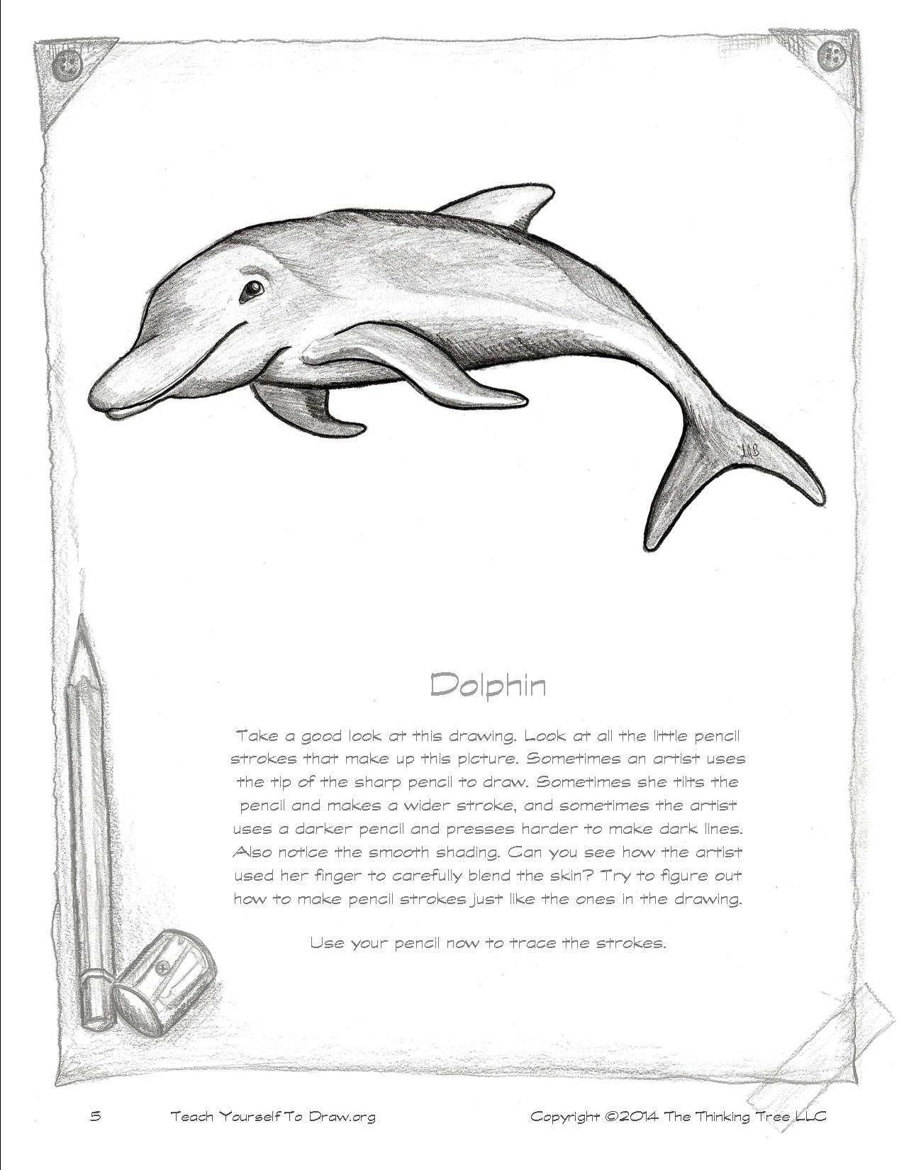 Draw Sea Creatures page 5.jpg