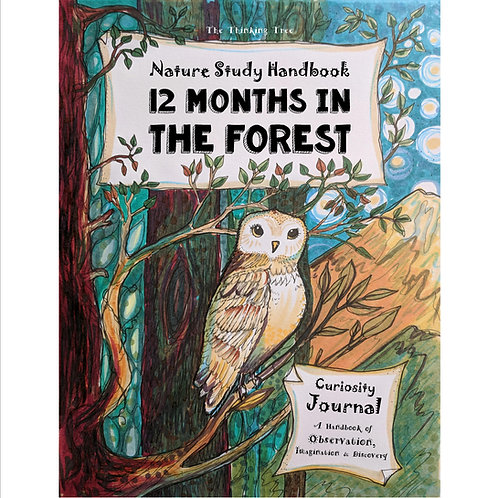 Nature Study - 12 Months in the Forest - PDF