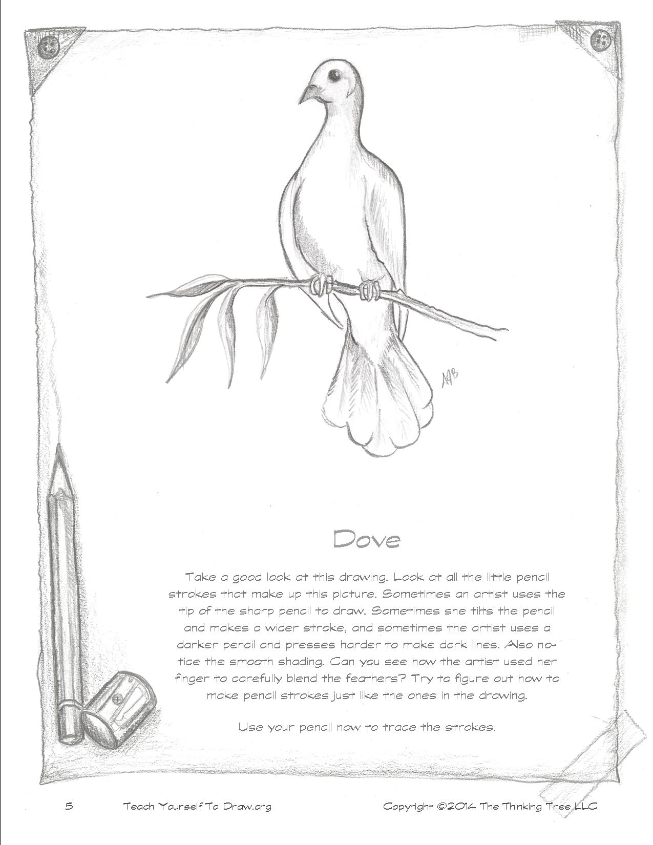 Draw Birds page 5.jpg