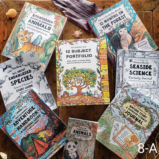 8th Grade Boy's & Girl's Curriculum Bundle
