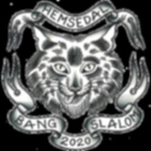 bang_slalom_2020-logo_edited.png