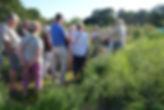 3 Truedssons odling 15 juli.JPG