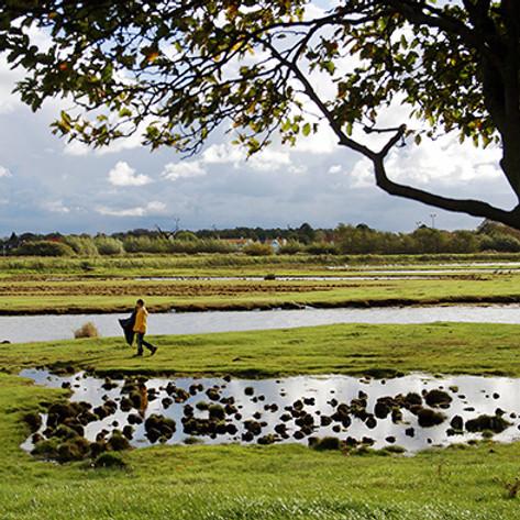 Naturvård i Flommen