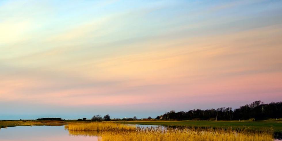 *Lediga platser* Nattens ljud på Flommen med Jan-Åke Hillarp