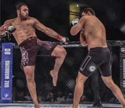 Mixed Martial Arts (MMA)