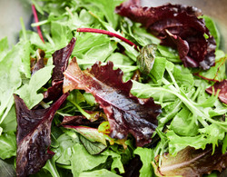 Celtic Salads