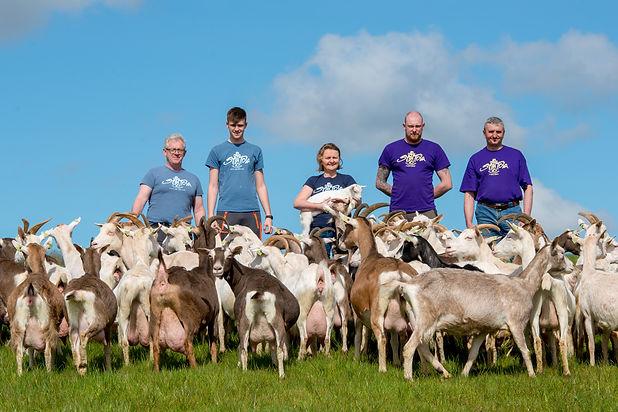 St Tola Goat Farm (1 of 1)-17.jpg
