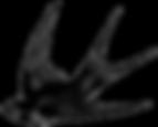 barn-swallow-bird-flight-drawing-bird.pn