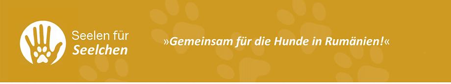 seelen-fuer-seelchen-Logo.png