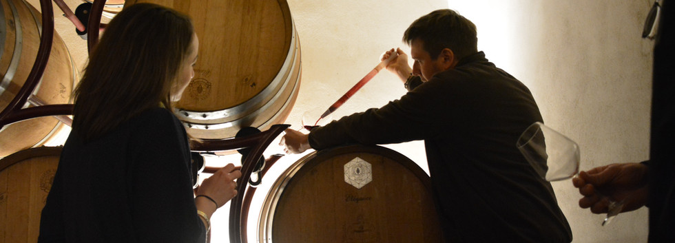 Half day - wine & olive oil tour - tasting wines from the barrels